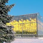 Тепличный комбинат «Майский», вносит весомый вклад в обеспечение продовольственной безопасности Республики Татарстан и является примером внедрения самых современных технологий, в том числе и в области безопасности.